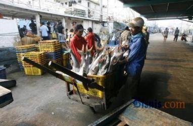 Sering Tolak Seafood Indonesia, Ini Parameter yang Dipakai AS