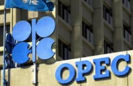 Irak-Kurdistan Bergolak, Produksi Minyak OPEC Turun
