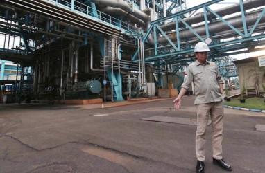 PROYEK KELISTRIKAN : ANJT Kaji 2 Pembangkit Biogas