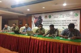 Satgas Perusahaan Didorong untuk Penyelamatan Orangutan di Kaltim