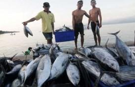 Butuh Kapal Ikan 15.700 GT untuk Garap Samudra Pasifik