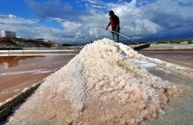Impor Dilakukan, Harga Garam di Pasar Tradisional Masih Tinggi