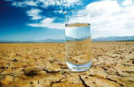 Dehidrasi Bisa Bikin Pembuluh Darah di Tengkorak Pecah