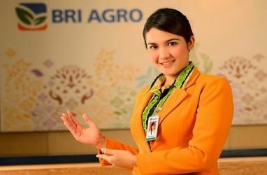 PROYEKSI 2018 : BRI Agro Andalkan Kelapa Sawit