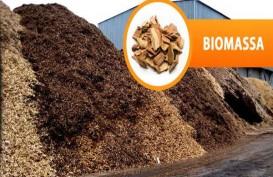 KLHK Bangun Reaktor Biomassa di Lampung