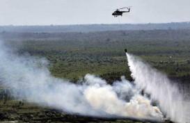 PENGELOLAAN LAHAN GAMBUT: BRG Bukan Semata Urusan Kebakaran
