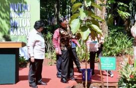Menteri Siti Nurbaya Ajak Pakar Lingkungan Silaturahmi ke PBNU