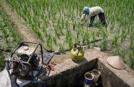 Pemkab Karawang Siapkan Asuransi Pertanian 70.000 Ha Sawah