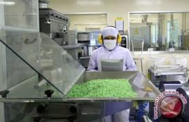 Utang BUMN Farmasi Naik 41,66% Tahun Lalu
