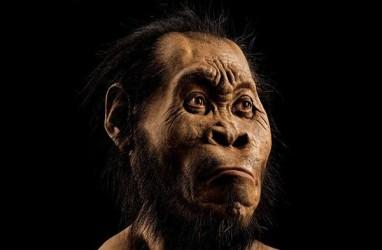 Fosil Homo Sapiens Tertua Ditemukan di Israel