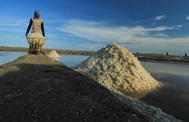 Harga Garam Lokal Mahal, Aneka Pangan Masih Andalkan Garam Impor
