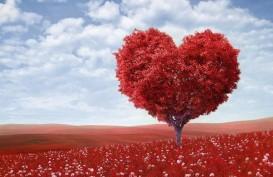 Dahsyatnya, 6 Manfaat Cinta untuk Kesehatan