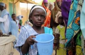 76 Siswi yang Diculik Boko Haram Diselamatkan Militer Nigeria