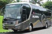 Januari 2018, Hino Dominasi Pasar Bus Kecil dan Medium