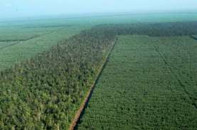 Biayai Proyek Ramah Lingkungan, Royal Lestari Utama…