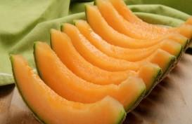 Rock Melon Australia Tercemar Listeria, 3 Orang Meninggal