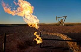 Produksi Rata-Rata Gas Alam Naik, Harga Cenderung Stagnan