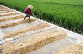 Wapres : Data Kementerian Pertanian Tak Pernah Sesuai Lapangan