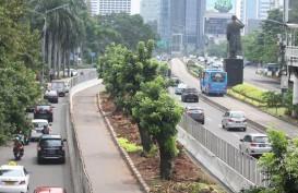 Pemprov DKI Sudah Relokasi 110 Pohon di Sudirman-Thamrin