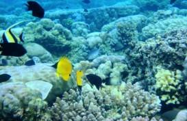 KUNJUNGAN WISMAN: Turis China Makin Gemari Destinasi Manado