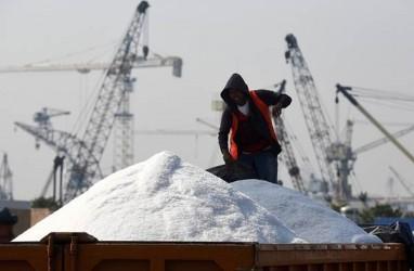 Airlangga Hartarto Paling Ngerti Soal Garam Industri, Kata Luhut
