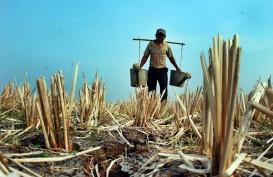 Nilai Tukar Petani Pada Maret Turun 0,39%