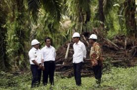 Bahas RUU Keanekaragaman Hayati, Jokowi Harapkan Nilai…