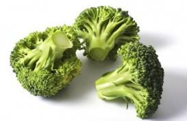 Ini dia Sayuran Penangkal Penyakit Kardiovaskular