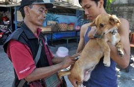 Kasus Rabies di Bali Menurun 55%