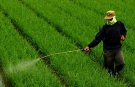 Pangsa Pasar Pestisida Palsu dan Ilegal di Indonesia Rp400 Miliar