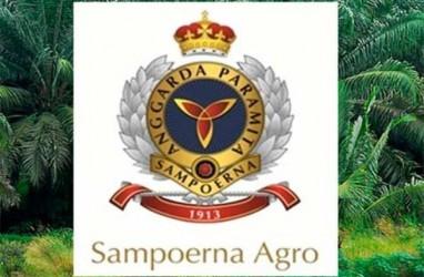 Sampoerna Agro (SGRO) Masih Yakin Kinerja Tumbuh 20%