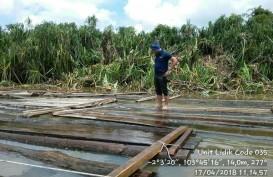 Polair Sumsel Temukan 1.848 Batang Kayu Ilegal