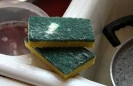Spons Dapur Jadi Rumah Bagi Ratusan Jenis Bakteri