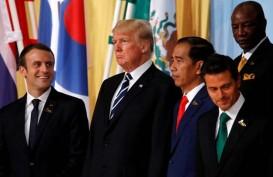 Pohon Hadiah Presiden Prancis untuk Trump Menghilang?