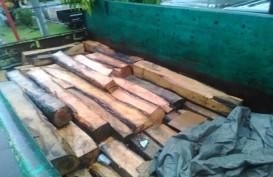 150 Batang Kayu Racuk Ilegal Disita