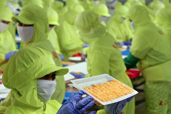 Aktivitas karyawan di pabrik pengolahan udang beku milik PT Panca Mitra Multiperdana di Situbondo, Jawa Timur, Minggu (18/3/2018). - JIBI/Nurul Hidayat