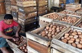 Harga Telur Ayam Perlahan Turun Setelah Sempat Rp22.000/Kilogram