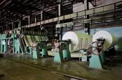 EMITEN KERTAS: ALDO Targetkan Pertumbuhan Laba di Atas 70%