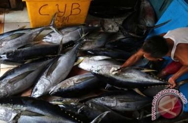 Ekspor Ikan Olahan Ke Jepang Dominan