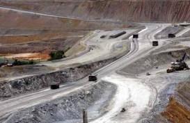 Ini Realisasi Ekspor Konsentrat Tembaga Amman Mineral dan Freeport