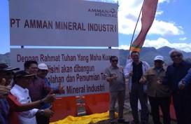 Amman Mineral Bor 50 Titik di Blok Elang
