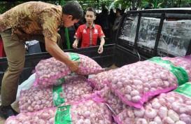 Mentan : Importir Bawang Putih Nakal Digantikan BUMD