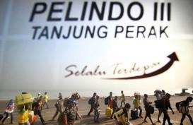 Mudik Lebaran 2018: Pemudik Kapal Laut Padati Pelabuhan Sampit dan Banjarmasin