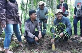 Tanam Bambu, UMM Dorong Konservasi Sumber Air