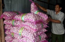 Kementan : Ada Praktik Nakal Importir Bawang Bombay