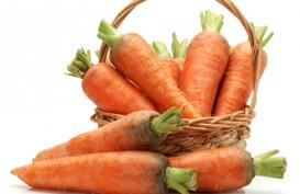 Berapa Asupan Vitamin A yang Baik Untuk Tubuh?