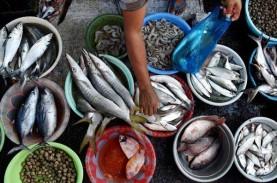 Harga Ikan Laut di Pasar Tradisional Bangka Naik Terimbas…