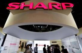 Penjualan TV Sharp pada Mei 2018 Naik 15% Ditopang Piala Dunia 2018 dan Pilkada