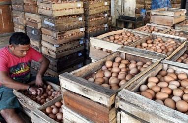 Harga Telur Ayam di Purwokerto Lampaui Kondisi Lebaran
