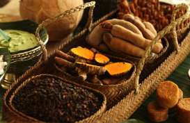 Melirik Potensi Pasar Jamu di Kancah Internasional